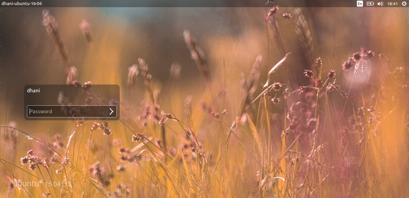 Ubuntu 16.04 screenshot 4.png