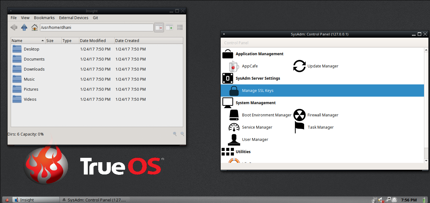 trueos desktop screenshots 1.png